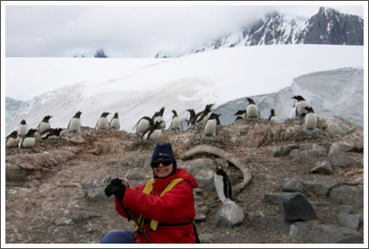 With the penguins in Antarctica–Jan. 2008