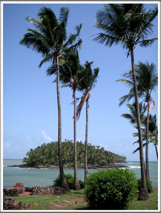 Devil's Island seen through the palms of Ile Royale