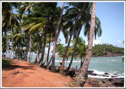 For all their dark history, the Iles du Salut today appear a tropical haven