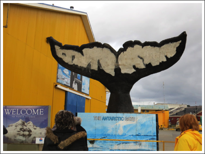 PUNTA ARENAS–a whale of a tale in Chile's gateway to Antarctica