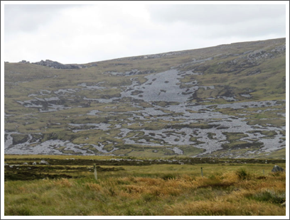 FALKLANDS–cold, windy, rainy, rocky, no trees, few roads: what's not to like
