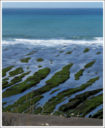 VALDES PENINSULA– unusual coastal formation of strips of mossy land and shallow tidal pools